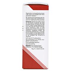 VERINTEX spag.Peka innerlich Mischung 50 Milliliter N1 - Rechte Seite