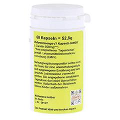 L-CARNITIN 500 mg Kapseln 60 Stück - Rechte Seite