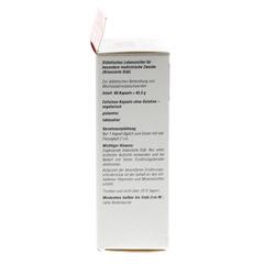 ALSIFEMIN 100 Klima-Aktiv m.Soja 1x1 Kapseln 60 Stück - Linke Seite