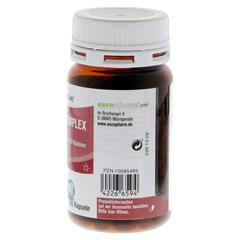 SOVITA active Vitamin B-Komplex Kapseln 200 Stück - Rechte Seite