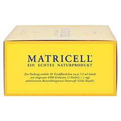 MATRICELL Königinnen TR Ampullen 30 Stück - Rechte Seite