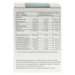 REGAZYM Plus Syxyl Tabletten 120 Stück - Rückseite