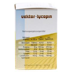 VEKTOR Lycopin Kapseln 90 Stück - Rückseite