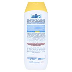 Ladival Allergische Haut Sonnenschutz Gel LSF 30 + gratis Ladival Standtuch 250 Milliliter - Rückseite