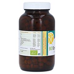 Gerstengras 500 mg Bio Tabletten 500 Stück - Rechte Seite