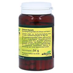 CHITOSAN KAPSELN 480 mg 90 Stück - Linke Seite