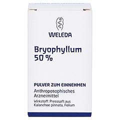 BRYOPHYLLUM 50% Pulver zum Einnehmen 20 Gramm N1 - Vorderseite