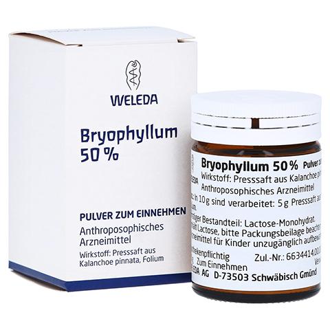 BRYOPHYLLUM 50% Pulver zum Einnehmen 20 Gramm N1