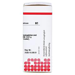 NUX VOMICA C 200 Globuli 10 Gramm N1 - Rechte Seite