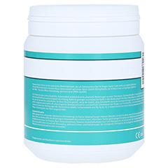 Panaceo Basic-detox Pulver 400 Gramm - Linke Seite