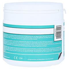 PANACEO Basic-Detox Pulver 200 Gramm - Rechte Seite