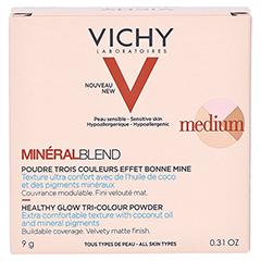 Vichy Mineralblend Mosaik-Puder Medium 9 Gramm - Rückseite