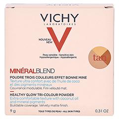 Vichy Mineralblend Mosaik-Puder Tan 9 Gramm - Rückseite