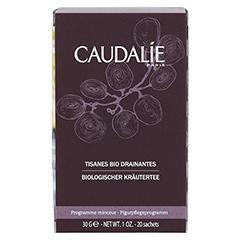 CAUDALIE Tisanes Bio Drainantes 30 Gramm - Vorderseite