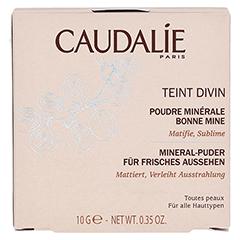 CAUDALIE Teint Divin Poudre Bonne Mine Minerale 10 Gramm - Vorderseite