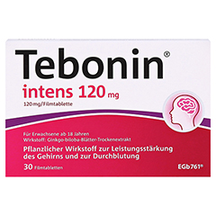 Tebonin intens 120mg 30 Stück N1 - Vorderseite