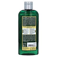 LOGONA Volumen Shampoo Bier & Bio-Honig 250 Milliliter - Rückseite
