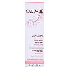 CAUDALIE Vinosource creme Sorbet hydratante 40 Milliliter - Rückseite