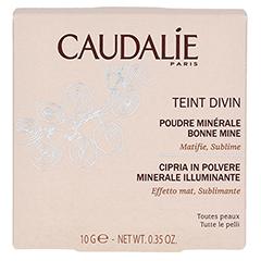 CAUDALIE Teint Divin Poudre Bonne Mine Minerale 10 Gramm - Rückseite