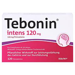 Tebonin intens 120mg 120 Stück N3 - Vorderseite