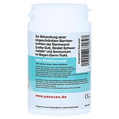 PANACEO Basic-Detox Pure Pulver 100 Gramm - Linke Seite