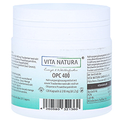 OPC TRAUBENKERNEXTRAKT 400 mg Vegi- Kapseln 120 Stück