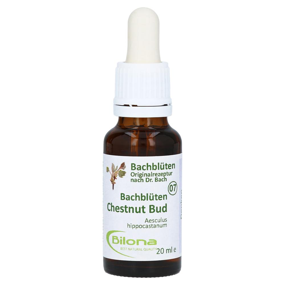 joy-bachbluten-chestnut-bud-20-milliliter