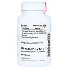 GRAVIOLA EXTRAKT 500 mg Kapseln 120 Stück - Linke Seite