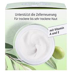 medipharma Olivenöl Intensivcreme 50 Milliliter - Rechte Seite