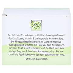 medipharma Olivenöl Intensiv-Körperbalsam 250 Milliliter - Rückseite