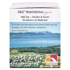 H&S Granatapfel Filterbeutel 20x2.0 Gramm - Rechte Seite