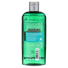 INTENSIV Repair Shampoo Ginkgo 250 Milliliter - Rückseite