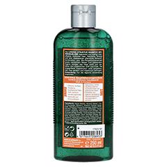 STRUKTUR Shampoo Bio-Ringelblume 250 Milliliter - Rückseite