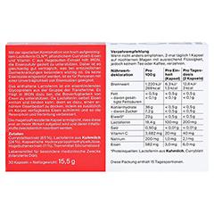 IRON magensaftresistente Kapseln 30 Stück - Rückseite