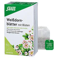 Weißdornblätter mit Blüten Tee Salus 15 Stück