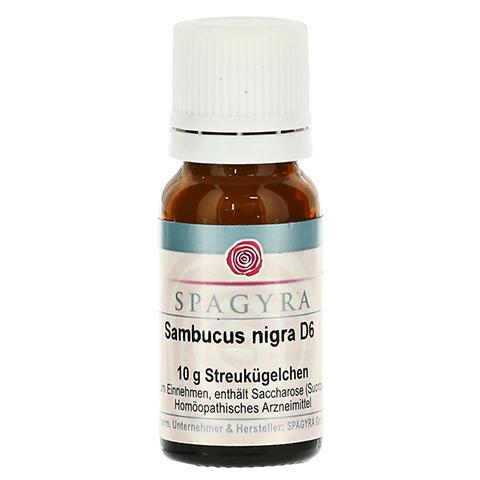 SAMBUCUS NIGRA D 6 Globuli 10 Gramm N1