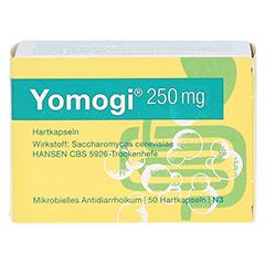 Yomogi 250mg 5Billionen Zellen 50 Stück N3 - Vorderseite