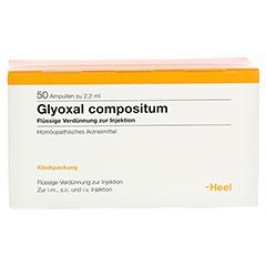 GLYOXAL compositum Ampullen 50 Stück N2 - Vorderseite
