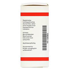 DOLICHOS PRURIENS D 12 Tabletten 80 Stück N1 - Rechte Seite