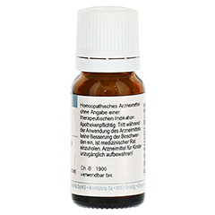 DELPHINIUM STAPHISAGRIA D 30 Globuli 10 Gramm N1 - Rückseite