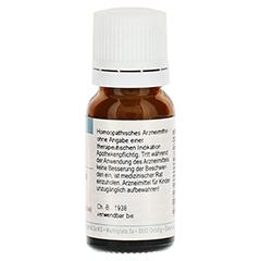 DELPHINIUM STAPHISAGRIA D 6 Globuli 10 Gramm N1 - Rückseite