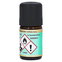 DUFT FAHR fit ätherisches Öl 5 Milliliter - Rückseite
