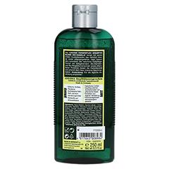 LOGONA Farbreflex Shampoo Blond Bio-Kamille 250 Milliliter - Rückseite