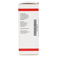 RUMEX D 6 Dilution 50 Milliliter N1 - Rückseite