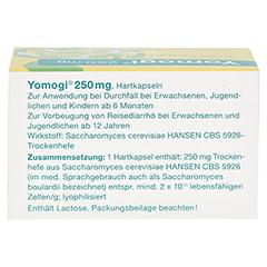 Yomogi 250mg 5Billionen Zellen 50 Stück N3 - Oberseite