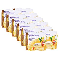 NUTRINI Creamy Fruit Sommerfrüchte 48x100 Gramm