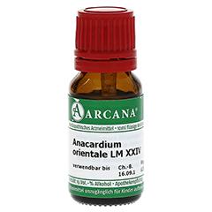 ANACARDIUM ORIENTALE LM 24 Dilution 10 Milliliter N1