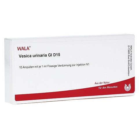 VESICA URINARIA GL D 15 Ampullen 10x1 Milliliter N1
