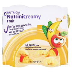 NUTRINI Creamy Fruit Sommerfrüchte 48x100 Gramm - Vorderseite