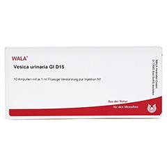 VESICA URINARIA GL D 15 Ampullen 10x1 Milliliter N1 - Vorderseite